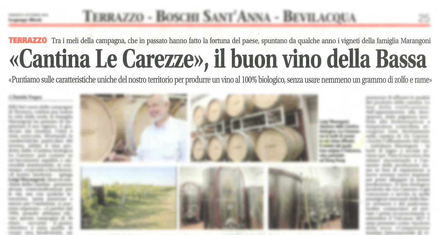 """Cantina Le Carezze"", the good wine of the South of Verona"
